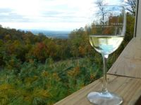 Fall View with Wine