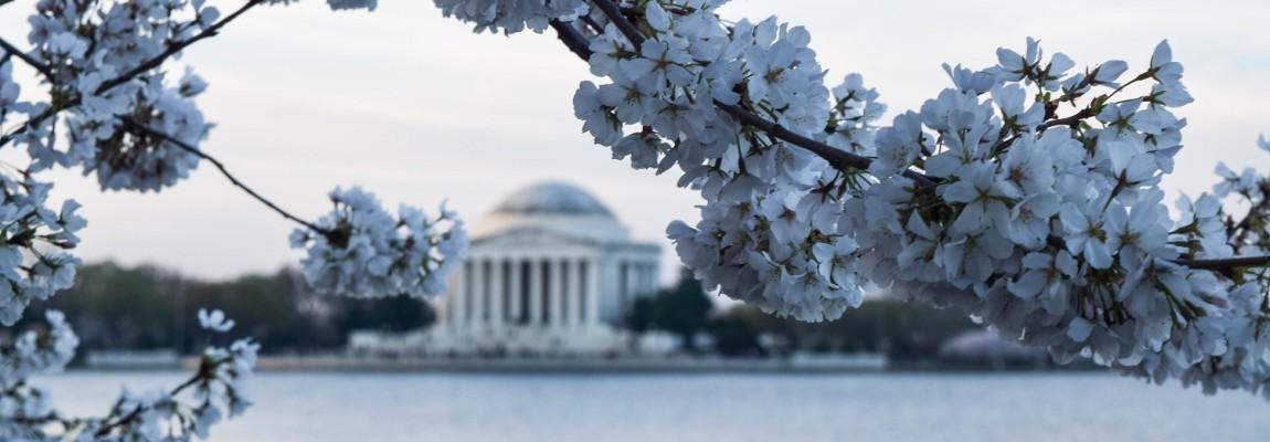 Returning to Washington, DC